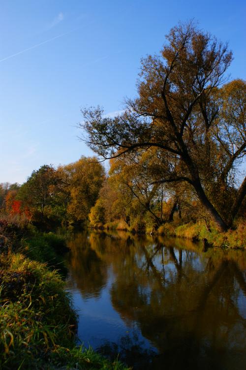 Liwiec #Obrazki