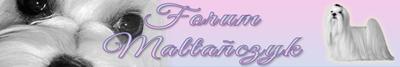 Forum Maltańczyk