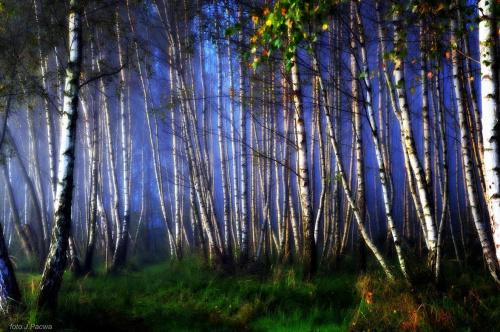 ,,jesiennie nad zalewem,,