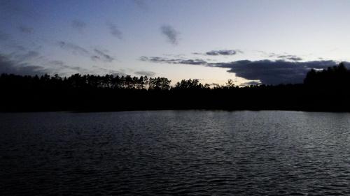 #grzyby #jeziora #las #natura #piękno #przyroda #stawy #wieś #wolność #zwierzęta