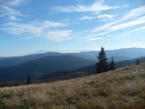 #Mogielica #jesień #góry #rower