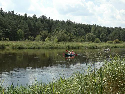 okilice Inowłodza woj. łódzkie #czerwiec #lipiec #rzeka #wakacje
