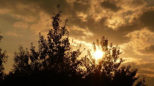 #balkonu #cycki #dom #drzewa #panasonic #słońca #słońce #zachód
