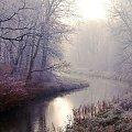 #Zima #park #poranek